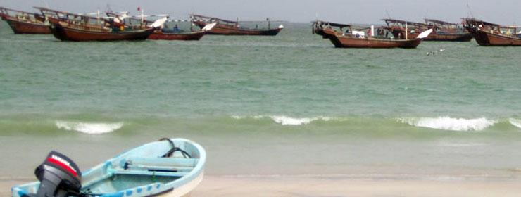 مرفأ مصايد الأسماك والتجمعات الصناعية