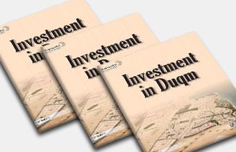 الإستثمار في الدقم